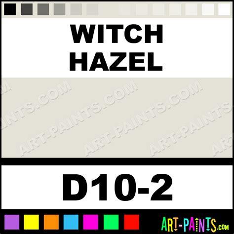 witch hazel paint color witch hazel interior exterior enamel paints d10 2