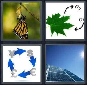 4 pics 1 word 7 letters butterfly 4 pics 1 word answer for butterfly cycle money solar