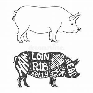 pork cuts diagram stock vector image 55384070 With pig butcher diagram
