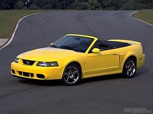 Ford Mustang Cobra : 2003 ford mustang svt cobra ford ~ Medecine-chirurgie-esthetiques.com Avis de Voitures
