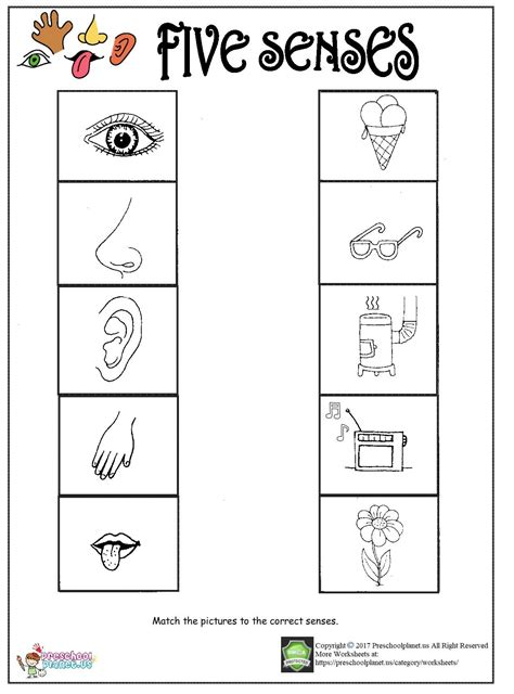 my five senses worksheet pictures to pin on