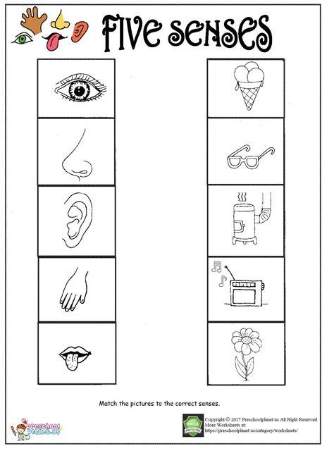 printable  senses worksheet