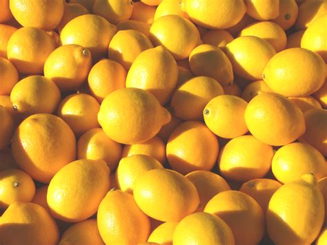 california citrus freeze close call  charbay vodka