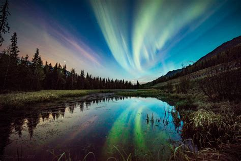 northern lights in alaska 10 reasons to visit alaska the adventures of lil nicki