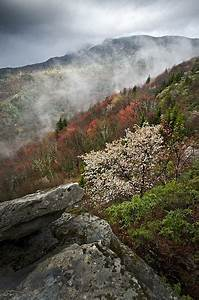 Grandfather Mountain | Spring, Spring colors and Bar