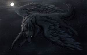 Wolf with wings wallpaper - 1308639