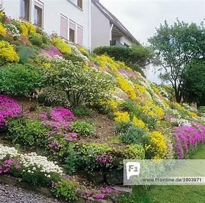 Blumen Für Steingarten : steingarten mit verschiedenen blumen lizenzfreies bild bildagentur f1online 2803971 ~ Markanthonyermac.com Haus und Dekorationen