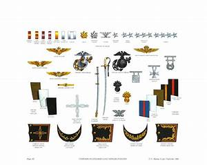 Archivo:Plate XI, Uniform Accessories and Officer Insignia ...