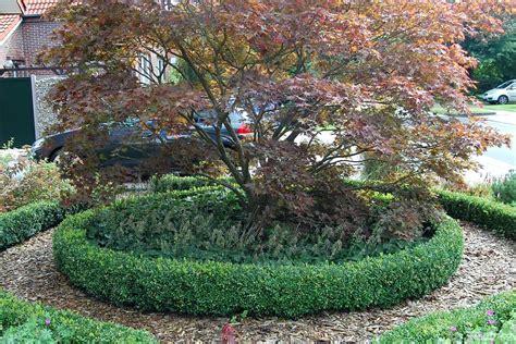 Bepflanzung Vorgarten Terrassen Neu Gestalten Garten