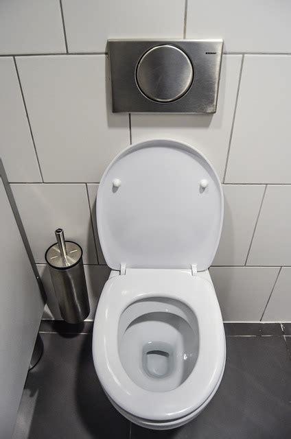 r 233 novation toilettes combien co 251 te l installation de wc