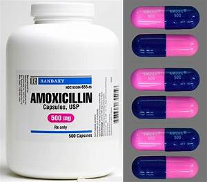 Can Dogs Have Amoxicillin? — Dr. Patrick Mahaney