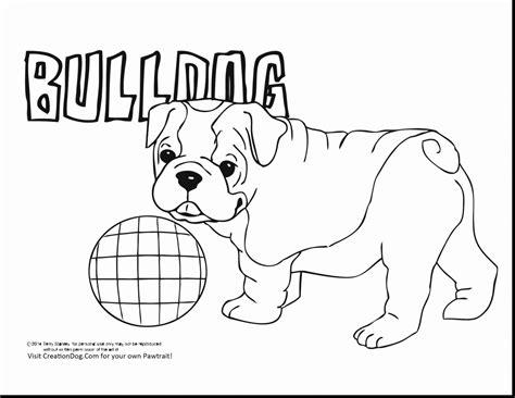 Amerikaanse Bulldog Kleurplaat by Bulldog Coloring Pages Coloringsuite