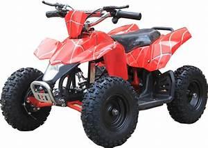 Kids Electric Atv  Quad Sahara 350 Watt Motor 24 Volt W  Reverse
