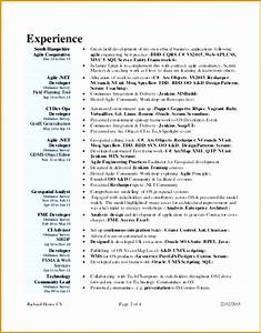 Web Programmer Cv 5 Web Developer Resume Example Free Samples Examples