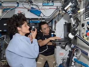 Suni Williams NASA - Pics about space