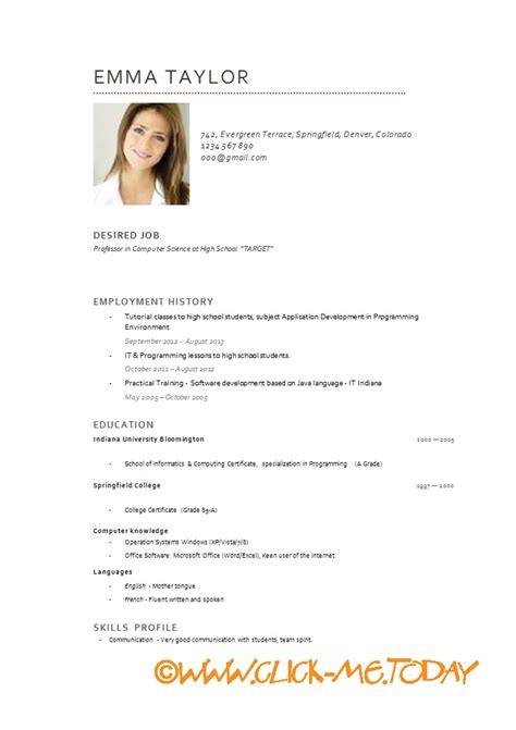 resume model in word model cv more exles