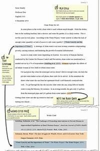 Mla Essay Format Citation