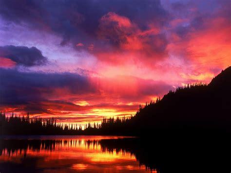Lizarella Beautiful Sunsets