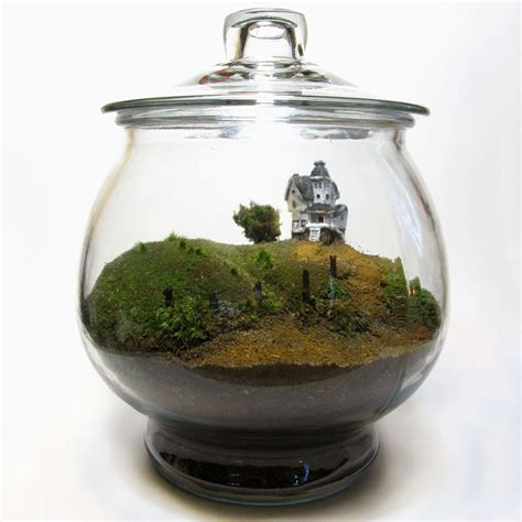 beetlejuice terrarium the green
