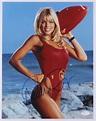 "Donna D'Errico Signed ""Baywatch"" 11x14 Photo (JSA COA ..."