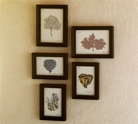 pottery barn prints southgate residential today s find pottery barn coral prints