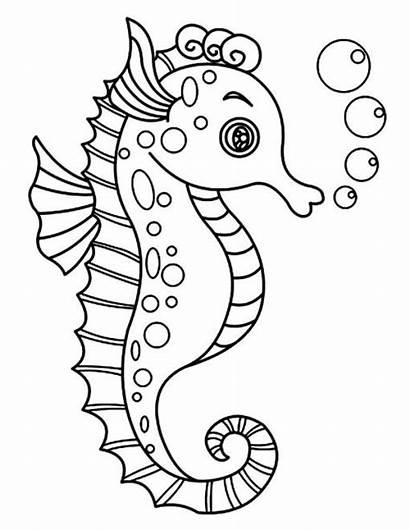 Sea Coloring Seahorse Drawing Horse Pages Toddlers