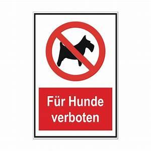 """Verbotsschild """"Für Hunde verboten"""" Das Hunde verboten Schild"""