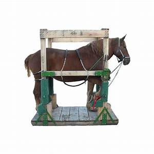 Amish manufactured Draft & Haflinger Horseshoeing Stocks