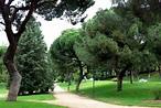 File:Madrid - parque del Oeste.jpg - Wikimedia Commons