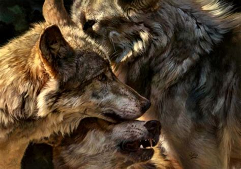 Alpha Wolf Wolf Pack Wallpaper by Alpha Wolf 1 Dogs Animals Background Wallpapers