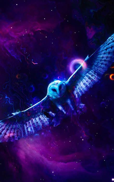 neon owl  pure  ultra hd mobile wallpaper