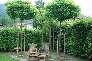 Dachschrägen Tapezieren Beispiele : sichtschutz terasse umbau haus ideen ~ Eleganceandgraceweddings.com Haus und Dekorationen