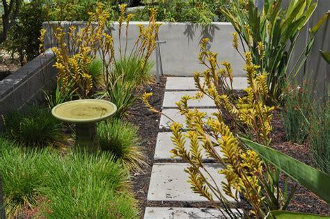 eichler landscaping eichler front yard landscape san francisco by huettl landscape architecture