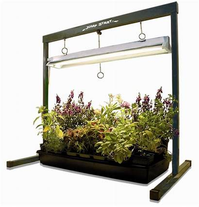 Greenhouse Jump Stand Start Wayfair Indoor