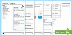 Endothermic Or Exothermic Investigation Instruction Sheet