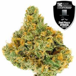 Lemon Skunk : Strain Review   Colorado Marijuana ...