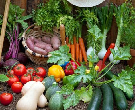 tips  vegetable garden odds