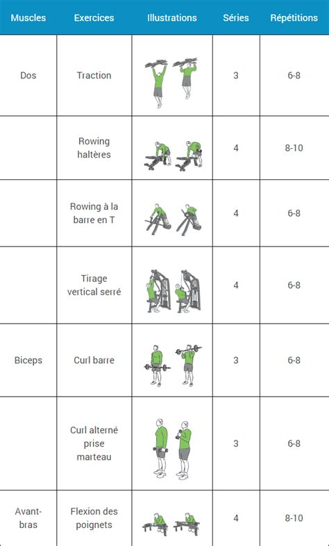 programme salle de musculation programme musculation d 233 butant espace musculation