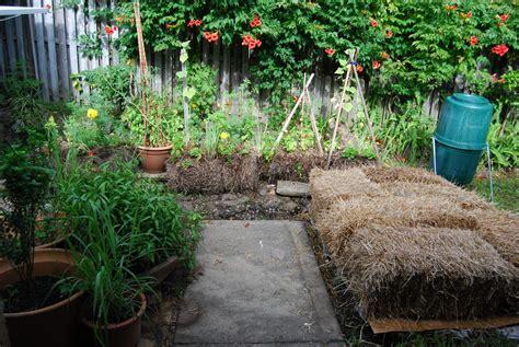 hay bale gardening vegans living the land straw bale lasagna gardening