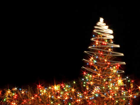 christmas lights in trees lights and tree on christmas black background wallpapers