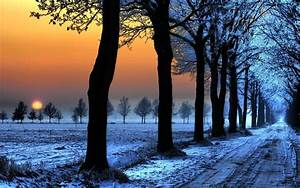 Snow, Dirt, Road, Trees, Sunset, Wallpapers, Hd, Desktop, And, Mobile, Backgrounds