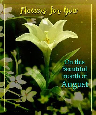 August Month Flowers Flower Card Greeting Greetings
