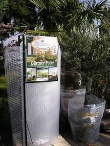 Pflanztopf Für Palmen : winterschutz f r olivenb ume u palmen olivenpark rhein ~ Lizthompson.info Haus und Dekorationen