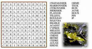 Mots Avec H : le blog de ludovica tout ce que j 39 aime les recettes de cuisine les dictons proverbes ~ Medecine-chirurgie-esthetiques.com Avis de Voitures