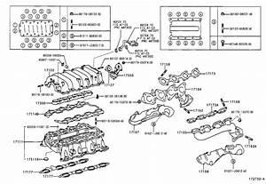Lexus Ls 430 Engine Intake Manifold Gasket