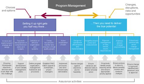program management program management program delivery effectiveness page 5
