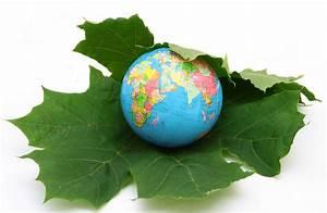 Sustainability Rachna Group