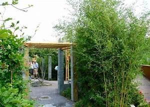 Bambus Sichtschutz Pflanzen : kleiner bambusgarten pergola bester sichtschutz im reihenhausgarten ~ Yasmunasinghe.com Haus und Dekorationen