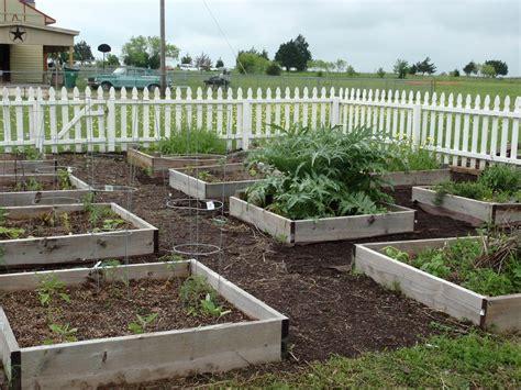 growing food in texas gardens field and feast field