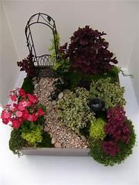 fine fairy garden design Visit Your Local Garden Store | Fairy Gardening & Terrariums | Fairy, My fairy garden, Garden